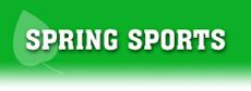 Spring Sports Banner