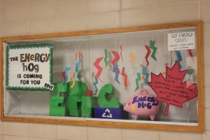 Display of Energy Hog