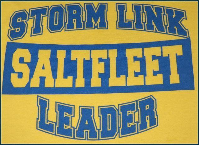 Storm Link Saltfleet Leader