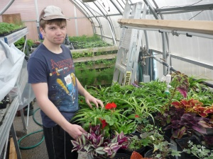 Student working with plants
