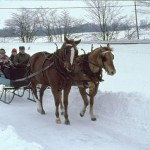 These pupils are lucky to get a sleigh ride to school
